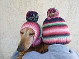 Набор женская шапка и шапка для собаки вязанные с помпоном, фото 3