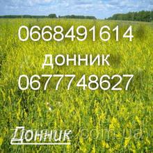 Семена Донник (Буркун)