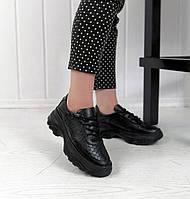 Чорні шкіряні кросівки з зміїним принтом, фото 1