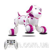 Робот Собака Радіокерована 30 см HappyCow Dog 18 функцій, світло, звук 777-338 Рожевий