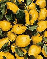 Картина рисование по номерам Соковиті лимони PN1235 Artissimo 40х50см розпис за номерами набір, фарби, пензлі,
