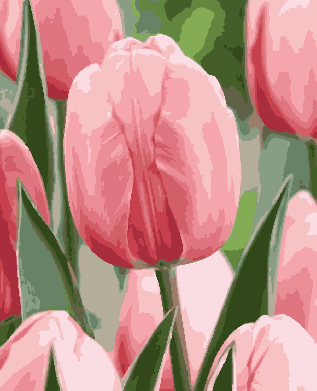 Картина рисование по номерам Ніжна весна PNX1960 Artissimo 50х60см розпис за номерами набір, фарби, пензлі,