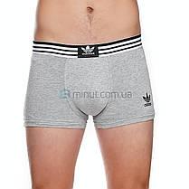 Мужские трусы Adidas 5 штук хлопок + 9 пар носков, фото 3