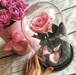 Долгосвежая троянда в подарунковій упаковці