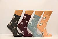 Женские носки с ангоры средние FINOX   м-8 цветные