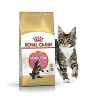 Royal Canin Maine Coon Kitten 0.4 кг сухой корм (Роял Канин) для котят породы мейн-кун