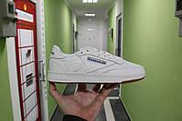 Мужские демисезонные кроссовки Reebok Workout white D38