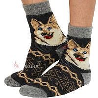 Чоловічі шкарпетки, 58