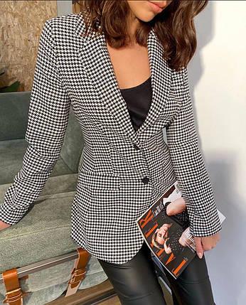 Классический женский пиджак с принтом гусиная лапка 42-44 р, фото 2