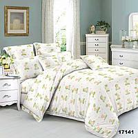 Комплект постельного белья детский ранфорс 17141