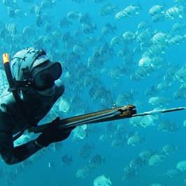 Рушниці для підводного полювання