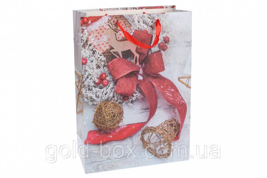 Новогодние пакеты оптом набор 12шт (2 вида)