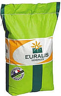 Купить Семена подсолнечника ЕС Генезис