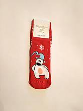 Теплые махровые носки женские с мишкой 35-41 размер