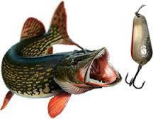Рибальські снасті, Інвентар для акваріумів