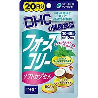 Форсколин плюс BCAA усиленная форма для быстрого похудения DHC Forskolin