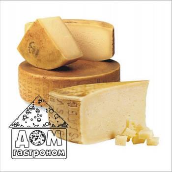 Закваска для сиру Монтаза на 6 л (для твердого сиру)