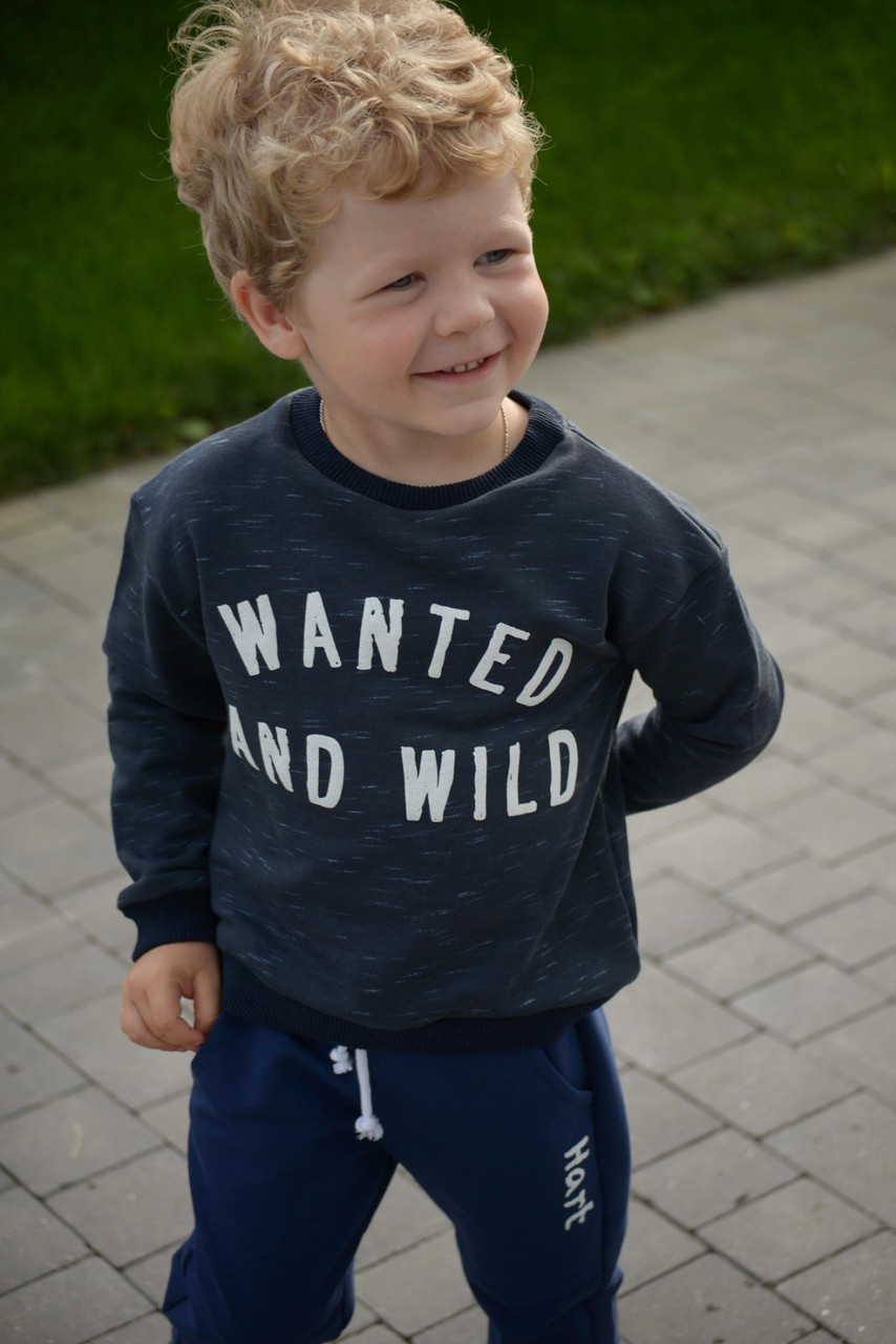Реглан детский трикотажный на мальчика (92-116) тринитка,