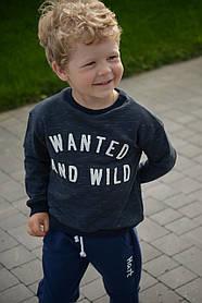 Реглан детский трикотажный на мальчика (92-116) тринитка, цвет електрик