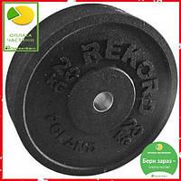 Бамперный диск REKORD 20 kg, фото 1