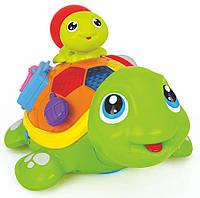 Игрушка Черепашки, Hola Toys