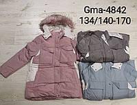 Куртка на меху для девочек Glo-Story,134/140-170 рр. Артикул: GMA4842 , фото 1