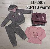 Трикотажный костюм-тройка с начесом для девочек Sincere,  80-110 pp. Артикул: LL2807