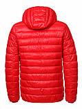 Чоловіча демісезонна куртка (Великі розміри), фото 2