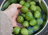 Варення з волоських горіхів 200 мл., фото 3