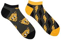 Короткие носки женские Sammy Icon Thundercat Short 36-40 Серые, фото 2