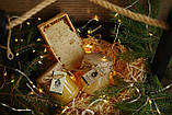 Соняшниковий мед 1 літр, фото 2