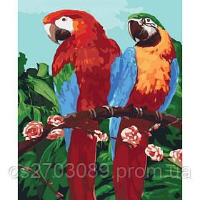 """Набор для росписи. Животные, птицы """"Королевские попугаи"""" 40*50см"""