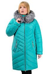 Зимняя куртка «Глория», р-ры 50-56, №223 бирюза