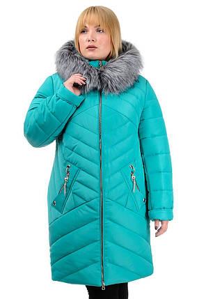 Зимняя куртка «Глория», р-ры 50-56, №223 бирюза, фото 2