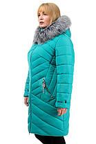 Зимняя куртка «Глория», р-ры 50-56, №223 бирюза, фото 3