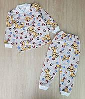 Пижама детская начес 28-36,собачки