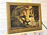 """Картина панно из янтаря """" Пума """" 30x40 см, фото 2"""