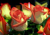 "Схема для вышивки бисером на атласе ""Роза"""