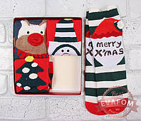 Носки женские в подарочной упаковке, фото 1