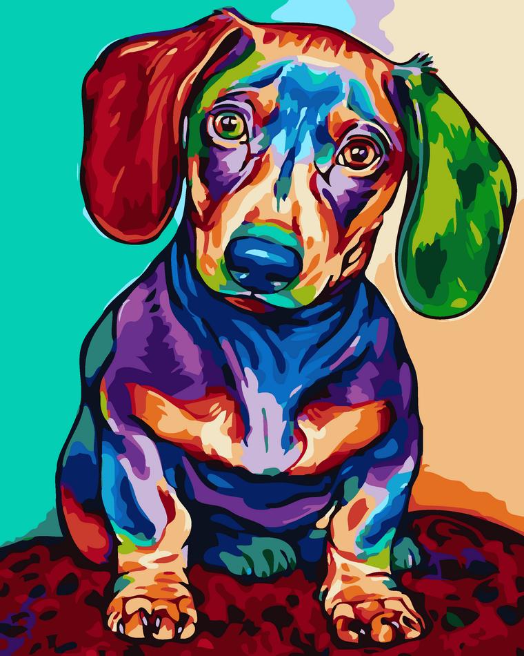 Картина рисование по номерам ArtStory Кольорова такса 40х50см AS0072 набор для росписи, краски, кисти, холст