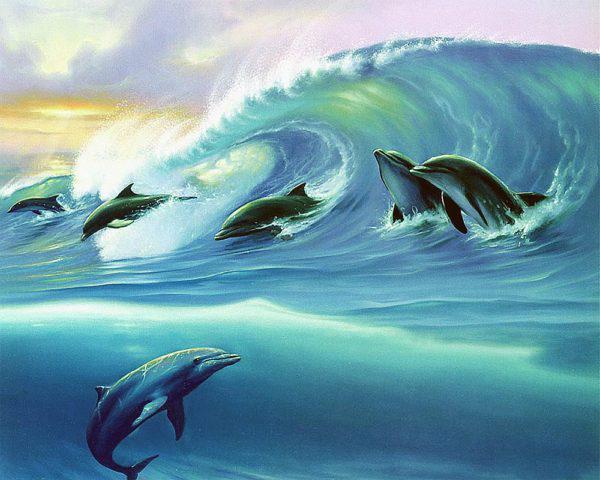 Картина рисование по номерам Чарівний діамант Дельфины РКДИ-0104 40х50см набор для росписи, краски, кисти,
