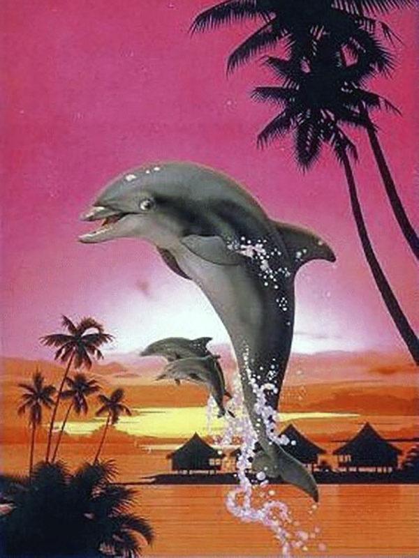 Картина рисование по номерам Чарівний діамант Веселые дельфины РКДИ-0206 30х40см набор для росписи, краски,