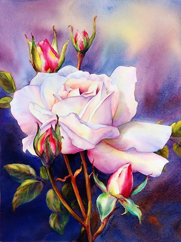 Картина рисование по номерам Чарівний діамант Акварельная роза РКДИ-0027 30х40см набор для росписи, краски,
