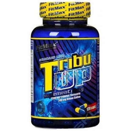 Бустер тестостерона Fit Max Tribu Up 60 caps, фото 2