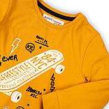 Детский лонгслив реглан для мальчика 9-12 мес, 74-80 см, фото 3
