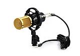 Микрофон студийный DM 800, фото 4