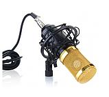 Микрофон студийный DM 800, фото 5