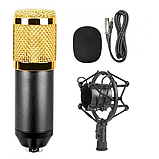 Микрофон студийный DM 800, фото 6