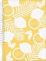 Скетчбук А5 Brunnen боковая спираль обложка лимон 100 г/м2, 80 листов (104748551)