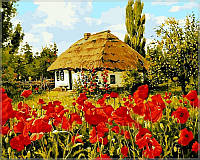 Картина по номерам Babylon VP355 Дом в маках 40 х 50 см, фото 1